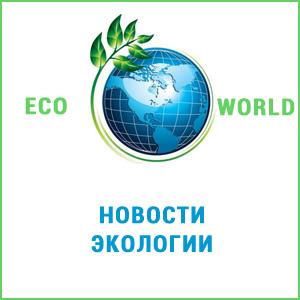 Новости экологии со всего мира